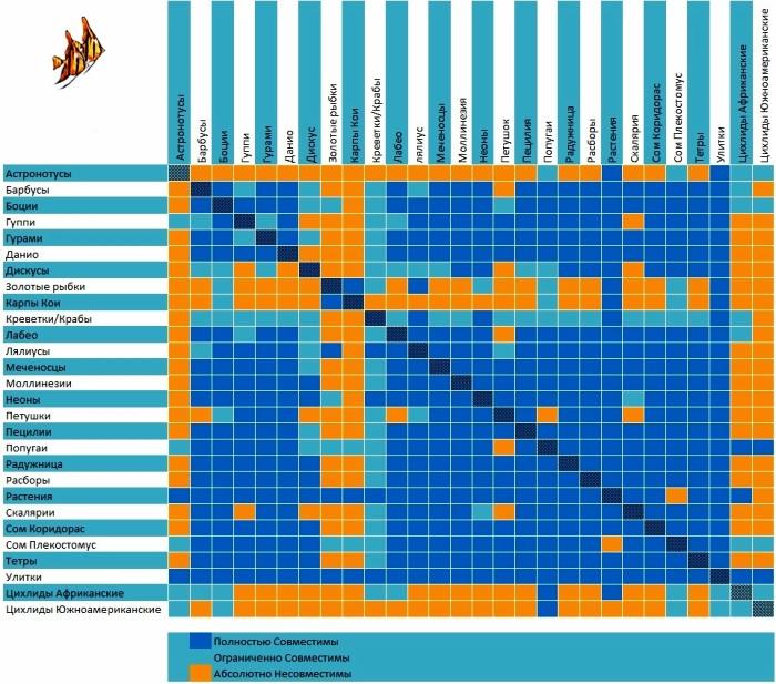 комплексного числа: содержание пецылий и креветок совместно фронта подошла